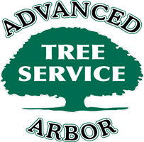 Tree Removal | Tree Trimming Service